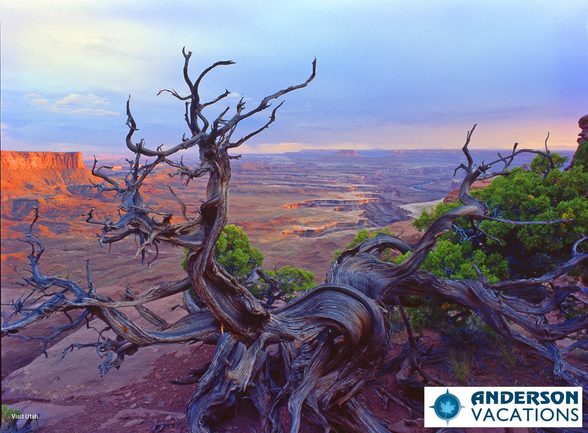 Canyon Lands National Park - Islands In the Sky Overlook