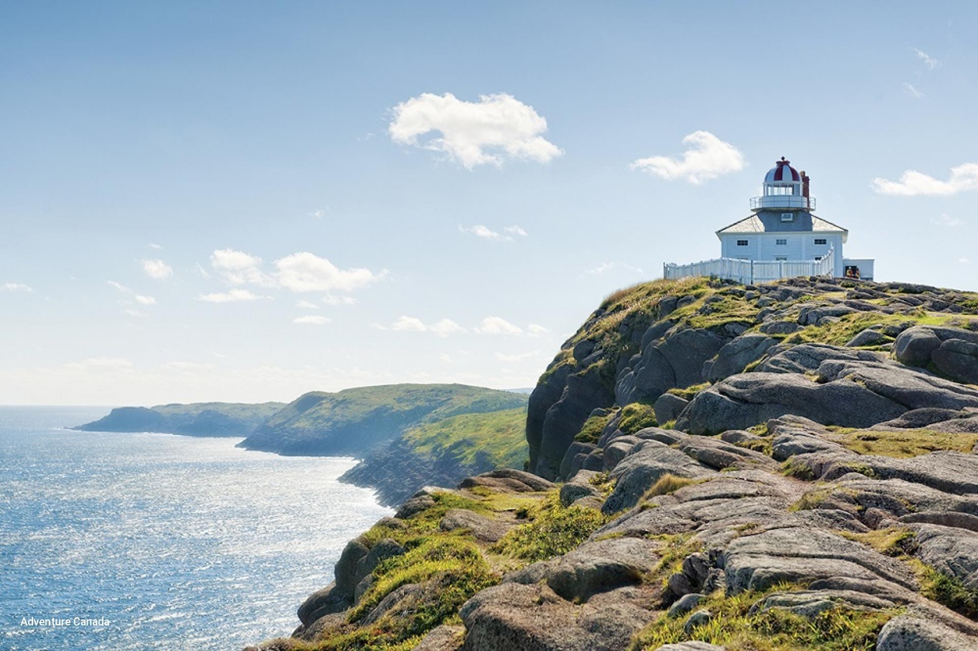 Newfoundland Cruise