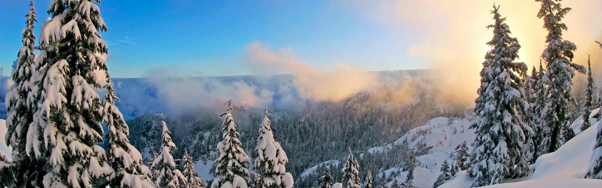 Alaska And Yukon Tours