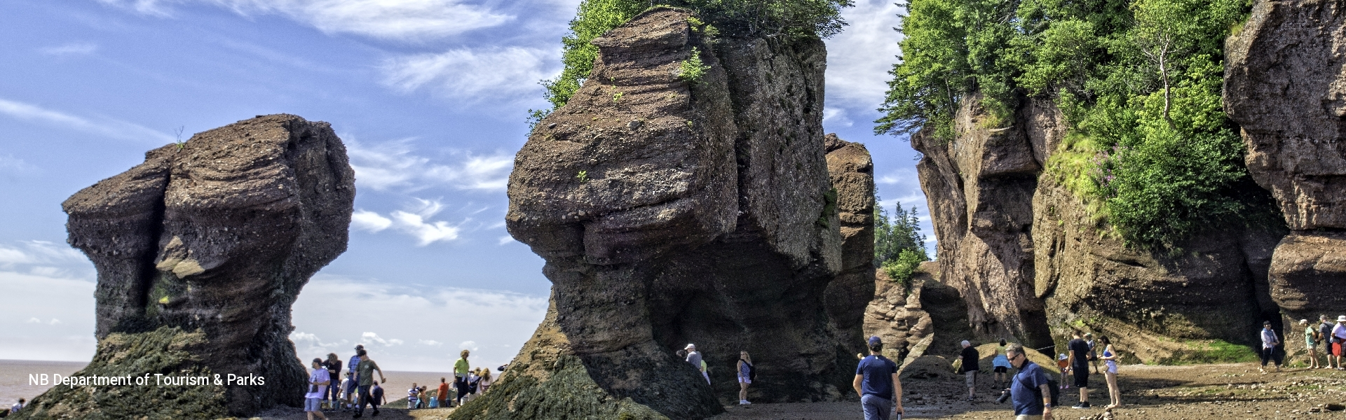 Bay Of Fundy Tours