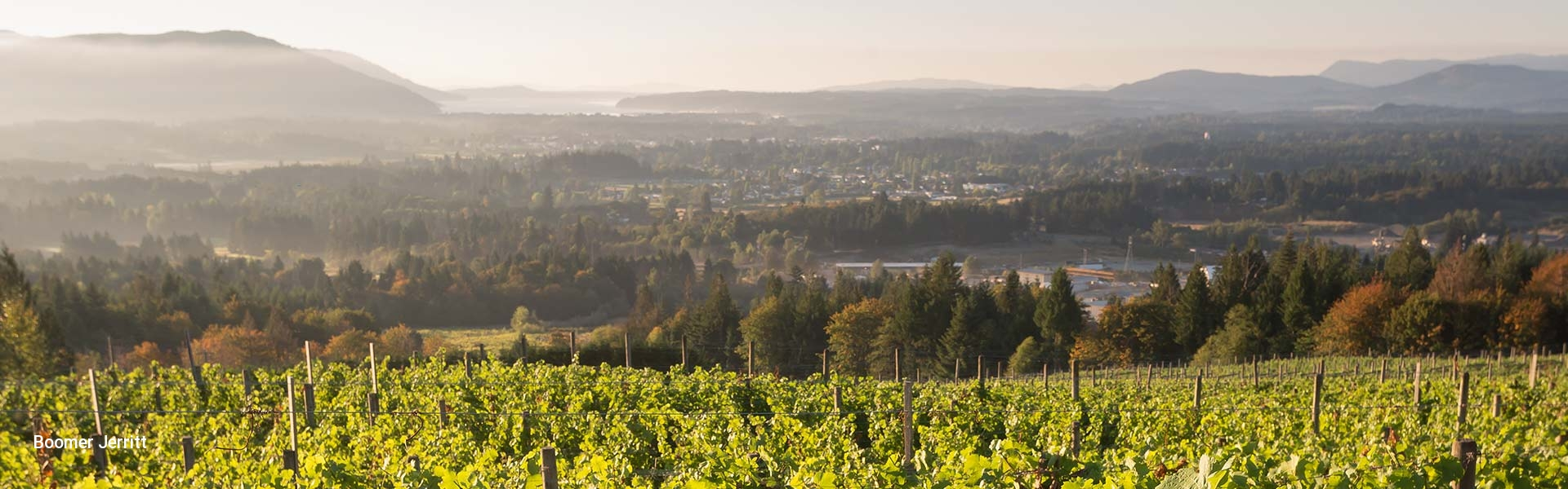 Vancouver Island Vineyard and Winery