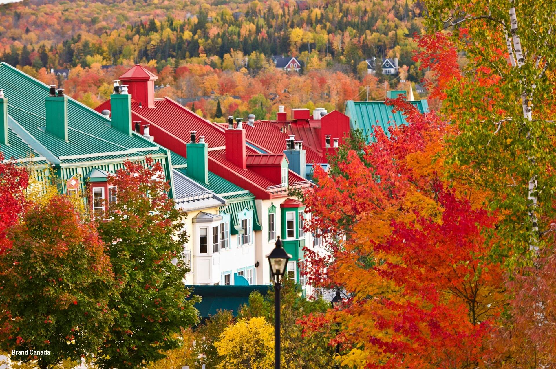 Quebec Tour