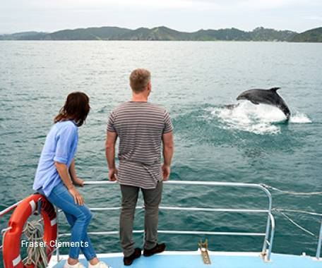 5 Day Discover the Bay of Islands