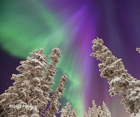 5 Day Vancouver and Yukon Aurora Viewing Package
